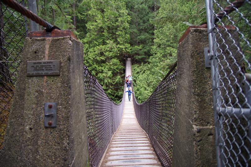 リンキャニオンパーク 吊り橋